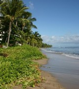30 Best Maui Vacation Rentals on TripAdvisor - Condos ...